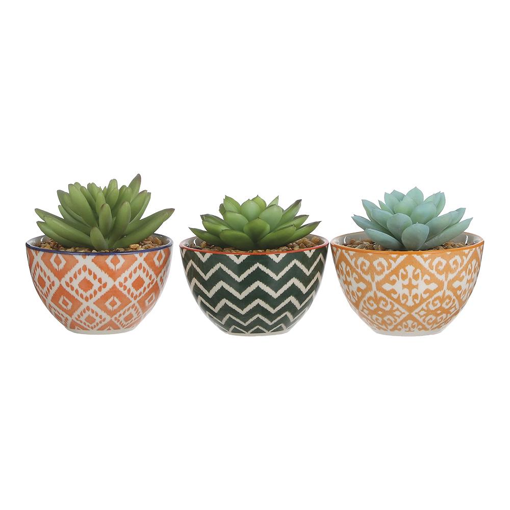 *Ult.Unidades*  Planta Cactus En Macetero